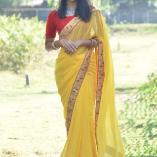 Chiffon Silk Saree With Borders- Gold
